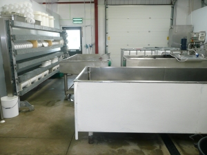 Our dairy