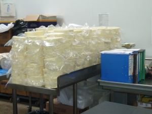 Almost there stack of sheep cheese, sealed and weighed, awaiting storage in the cold room