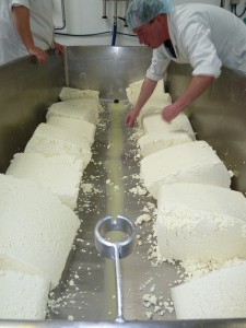 Stu turning the gargantuan blocks of sheep curd on our penultimate make