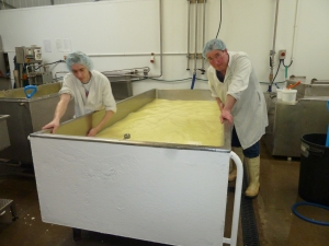 Stu and Andrew giving the large vat a pre-wash prior to taking the whey off; sheep's milk is hugely rich and fatty and can be a devil to clean off if it gets stuck on