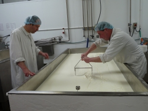 Stu cutting the big vat with Simon looking on; we let Simon cut the small vat