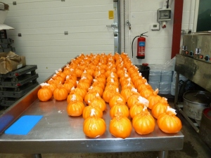 130 finished pumpkins!