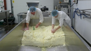 Cutting the curd into blocks